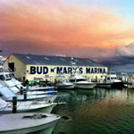 Bud N Mary's Fishing Marina