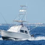 Cloud Nine Fishing Charters