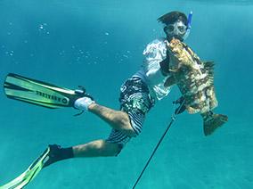 Bahamas Diving Vacation