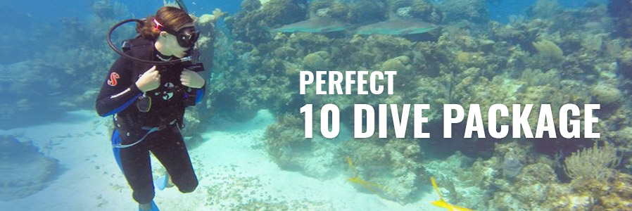 Perfect 10 Dive Package