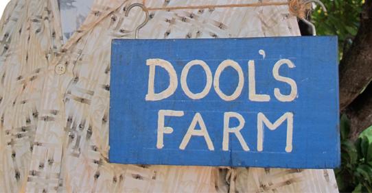Dool's Farm
