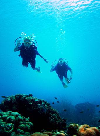 Scuba Diving Cat Island