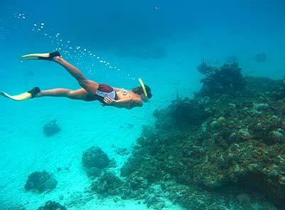 Snorkeling Adventures