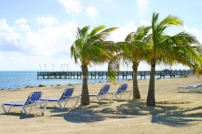 Oceanside Villas at Guy Harvey Outpost Resort in Islamorada, FL