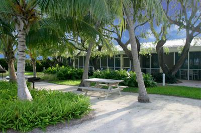 Accommodations at Oceanside Resort, Islamorada, FL