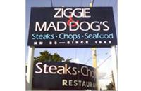ziggie-mad-dogs