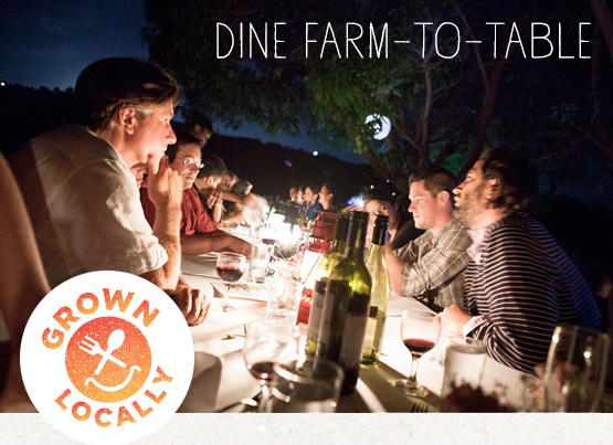 Dine Farm To Table