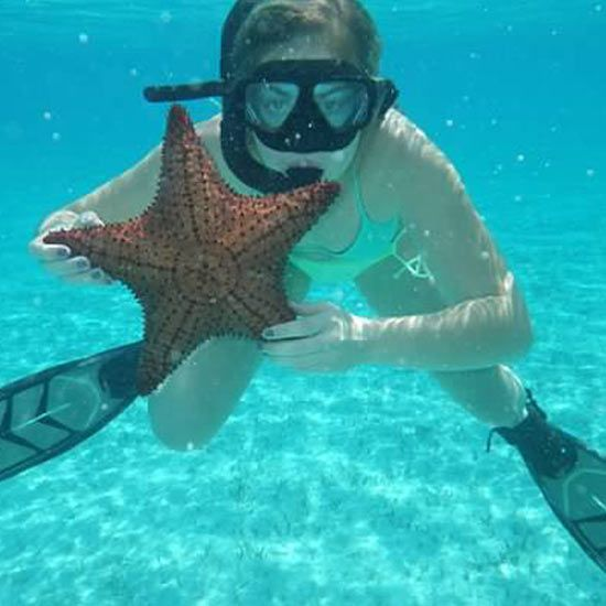 Snorkeling with the Stars!