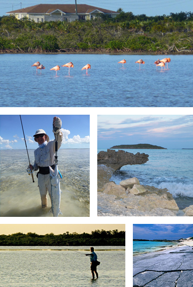 Activities & Amenities - Bone-fishing & Sports Fishing