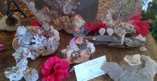 Design with Shells